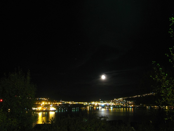Moonshine in the Harbour