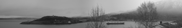 Narvik Harbour - Black and White