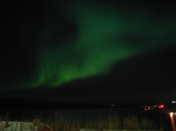 Northern Lights above The Ofoten Fjord