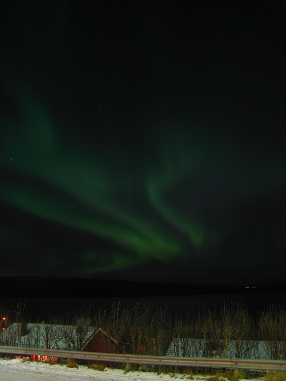 Northern Lights above The Ofoten Fjord 5