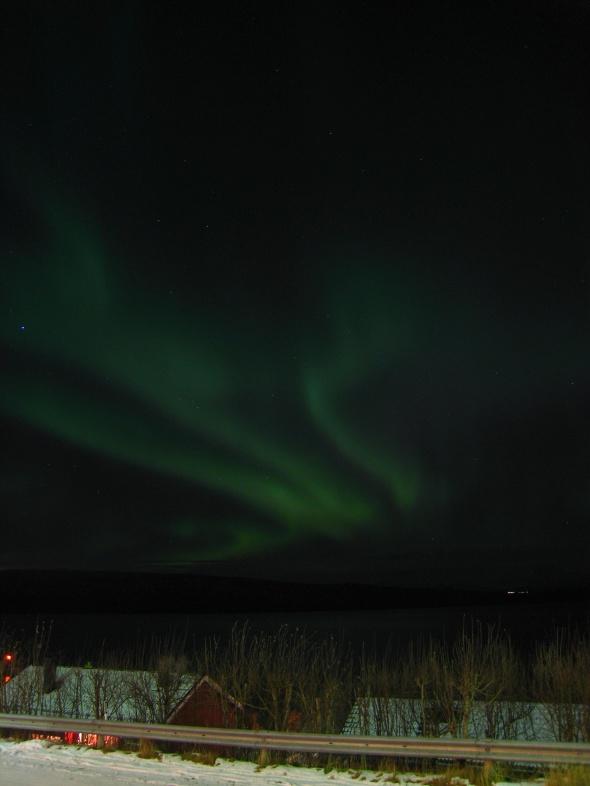 Northern Lights above The Ofoten Fjord 5