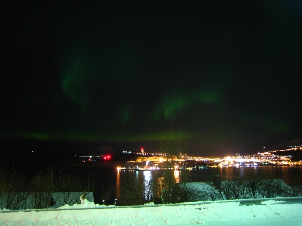 Northern Lights above the Ofoten Fjord tonight
