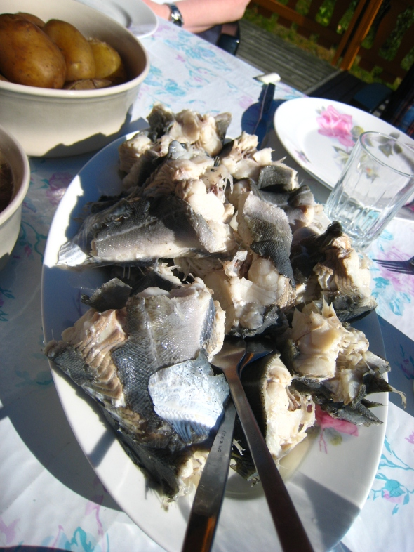 Traditional North-Norwegian summer-meal fresh pollock (saithe)