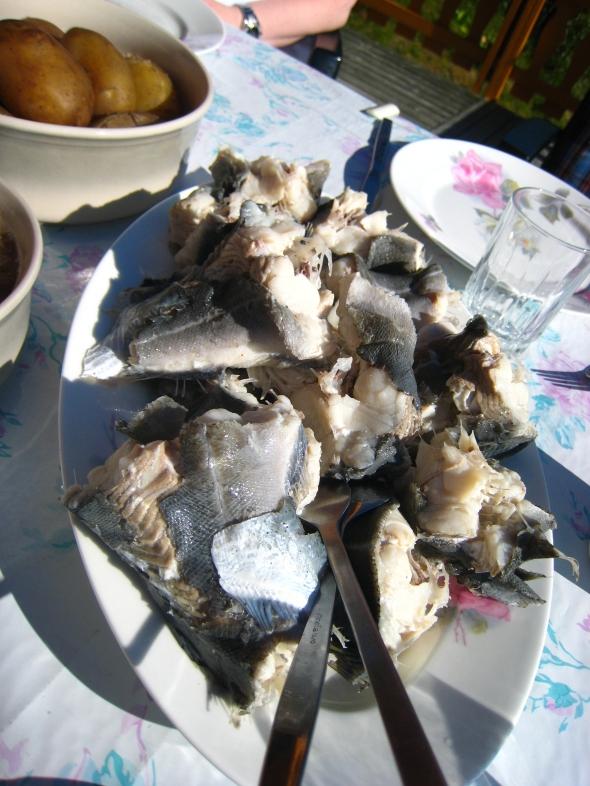 Traditional North-Norwegian summer-meal fresh pollock (saithe)