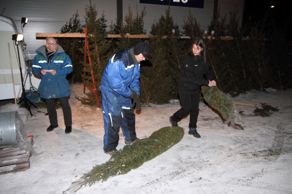 Lions Club Narvik/Ankenes selling Christmas Trees to aid people in need! It's a cold job!