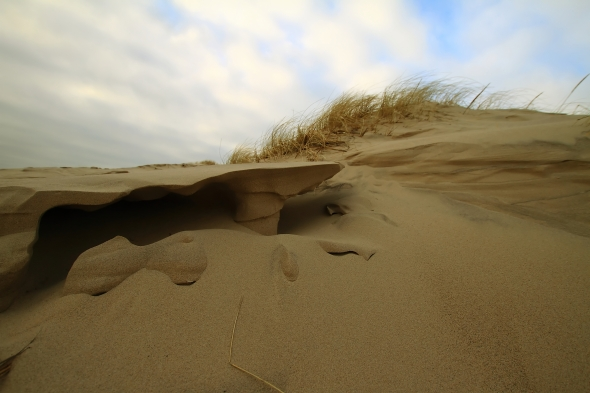 Patterns of eroding sand - by the Old Skagen Beach