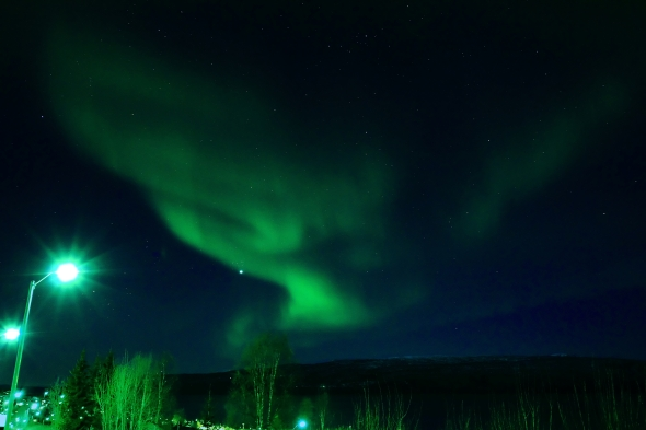 Northern Lights yesterday - Venus is shining through the vail of Northern Lights