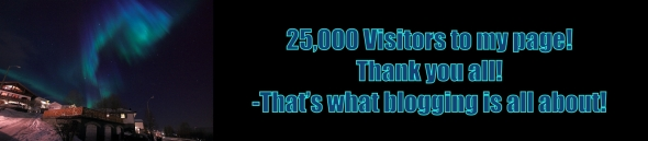 25,000 visitors to my blog